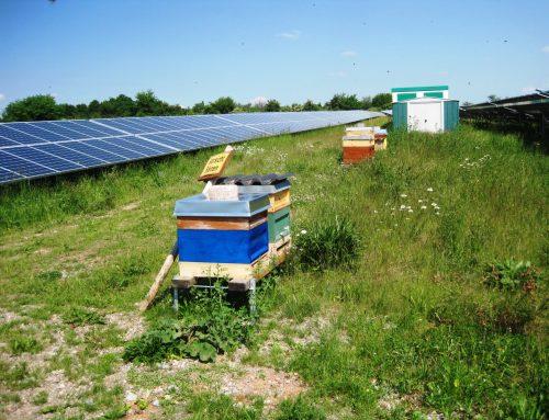 Strom ist LichtBlau – Photovoltaik leicht erklärt!