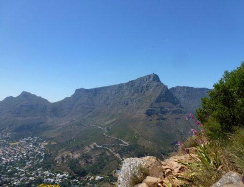 Südafrika Consulting MSA für den Mittelstand