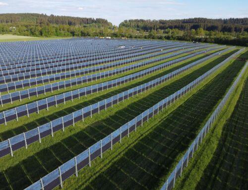 Agrar Photovoltaik – Solar und Landwirtschaft ein starkes Team